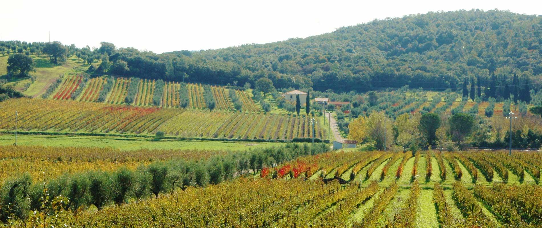 Campagne della Toscana