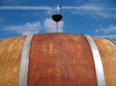 Wine tour nella Costa degli Etruschi